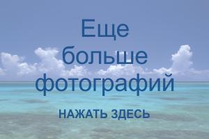 Авиабилет москва норильск цена